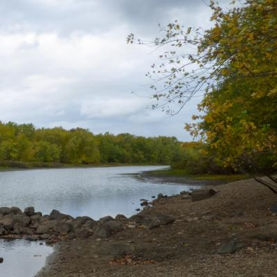 The Sudbury River at Greenways Conservation Area, by Wayne Hall
