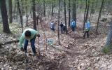 Volunteers helped SVT's Stewardship staff clear a new trail at Ciesluk Forest during National Volunteer Week 2017.