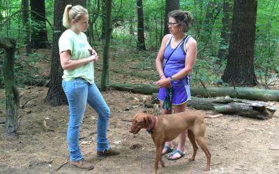 Engaging Dog Walkers on SVT Trails