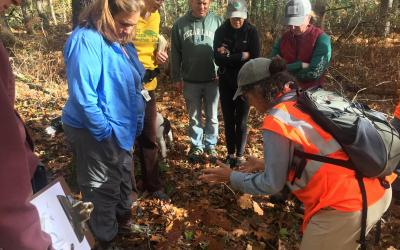 Laura Mattei (right) discussed forest health with members of the Carlisle Conservation Foundation.