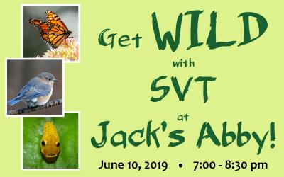 Get WILD with SVT at Jack's Abby